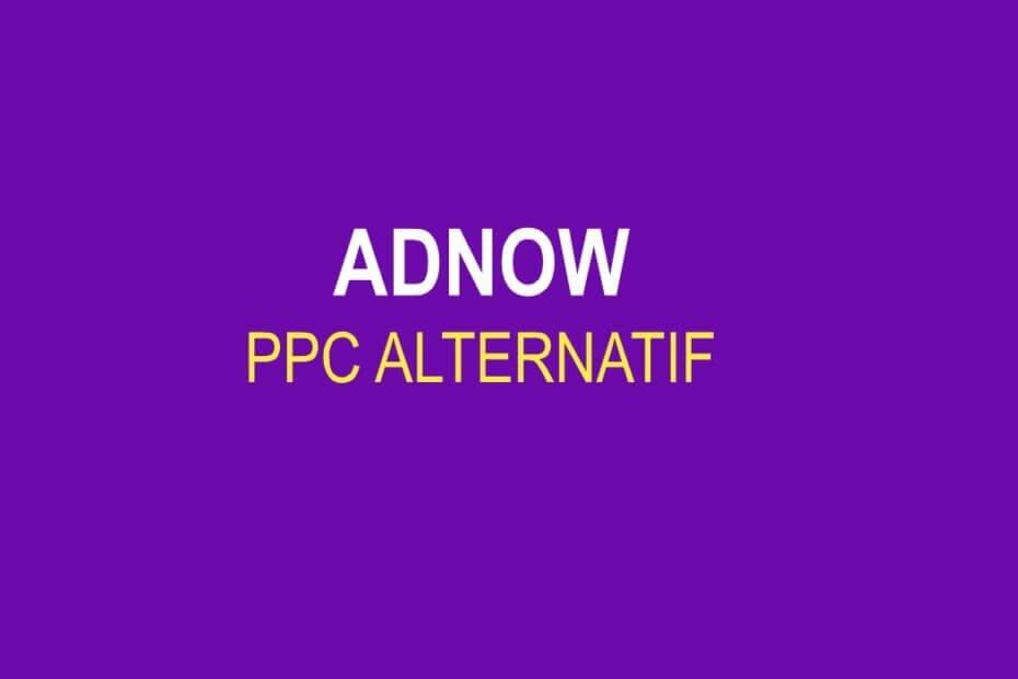 Adnow PPC Alternatif